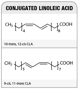 CLA-chemical-structures