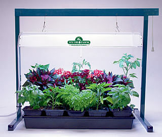 jump_start_grow_light